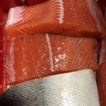 king salmon fillets